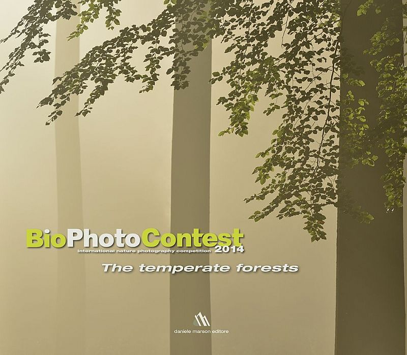 Immagine di THE TEMPERATE FORESTS